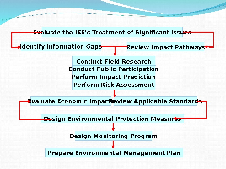Evaluate the IEE's Treatment of Significant Issues Identify Information Gaps Review Impact Pathways Conduct Field Research