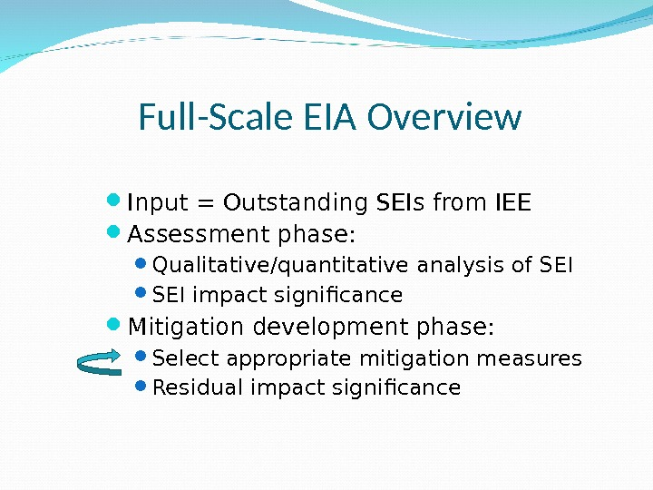 Full-Scale EIA Overview Input = Outstanding SEIs from IEE Assessment phase:  Qualitative/quantitative analysis of SEI