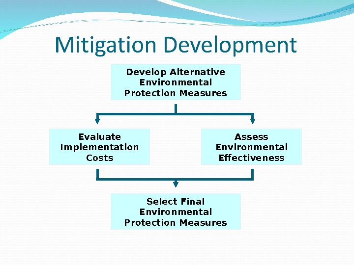 Develop Alternative Environmental Protection Measures Evaluate Implementation Costs Assess Environmental Effectiveness Select Final Environmental Protection Measures