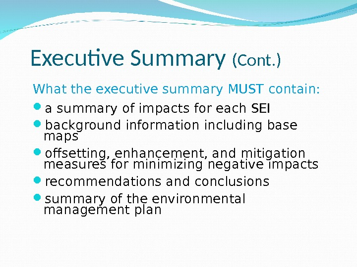 Executive Summary (Cont. ) What the executive summary MUST contain:  a summary of impacts for