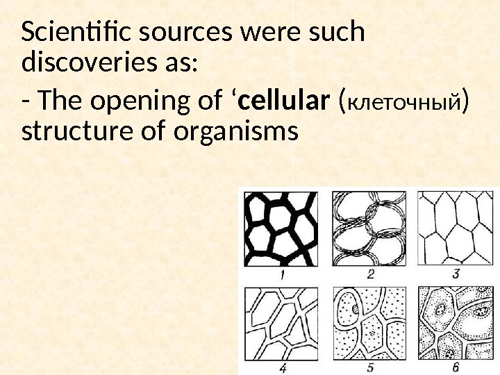 Scientific sources were such discoveries as: - The opening of ' cellular ( клеточный ) structure