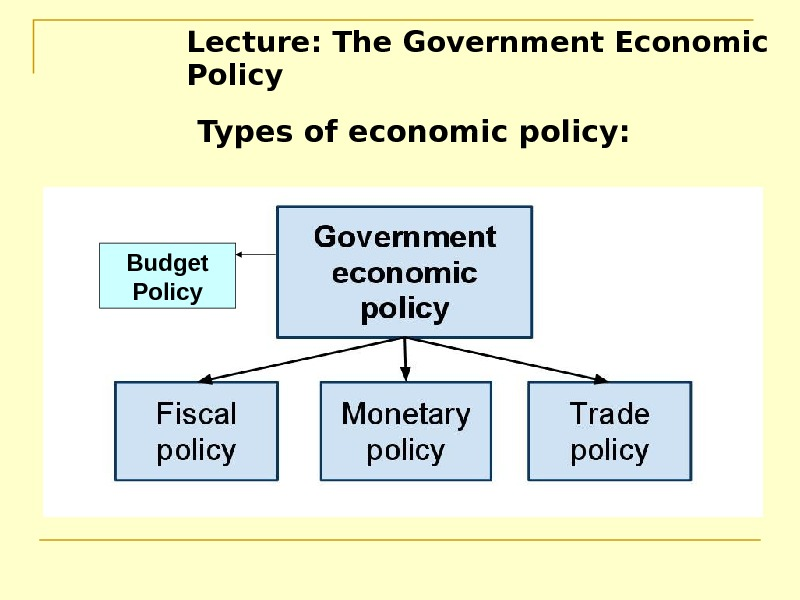 Lecture: The Government Economic Policy  Types of economic policy:  Budget Policy