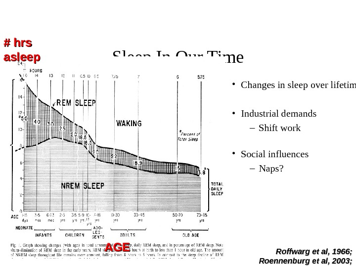 Sleep In Our Time • Changes in sleep over lifetime • Industrial demands –