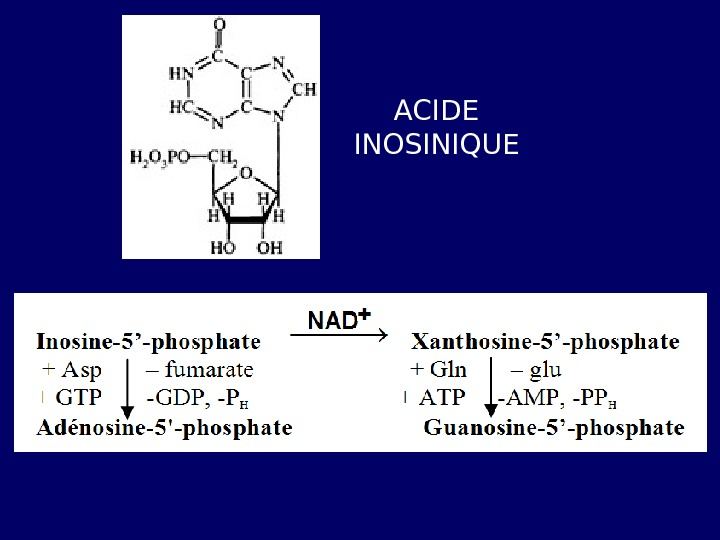 ACIDE INOSINIQUE