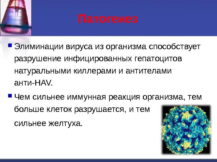 Патогенез  Элиминации вируса из организма способствует разрушение инфицированных гепатоцитов натуральными киллерами и антителами анти-HAV.