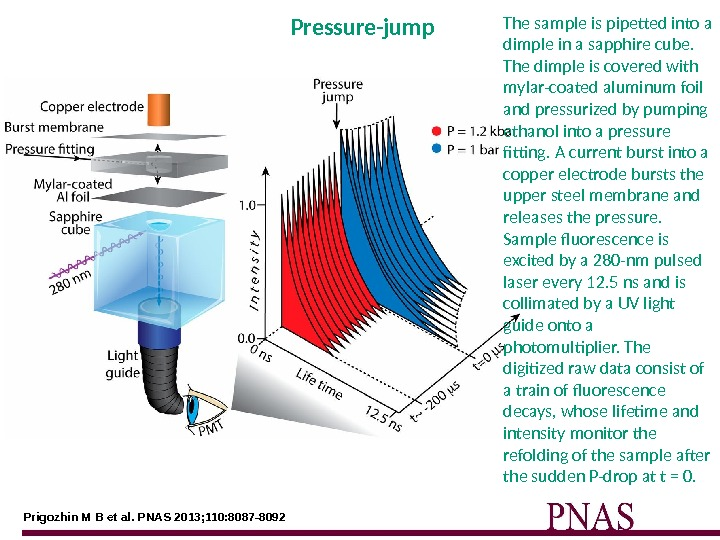 Prigozhin M B et al. PNAS 2013; 110: 8087 -8092 Pressure-jump The sample is pipetted into