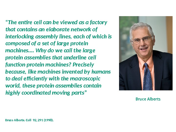 "Bruce Alberts "" The entire cell can be viewed as a factory that contains an elaborate"