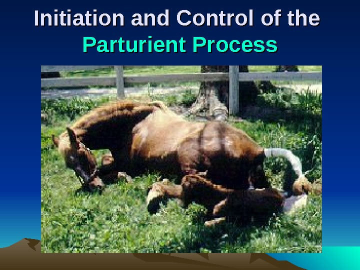 Initiation and Control of the Parturient Process