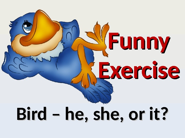 Bird – he, she, or it? Funny Exercise