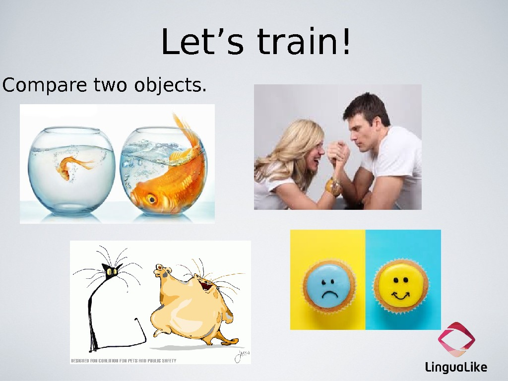Let's train! Compare two objects.