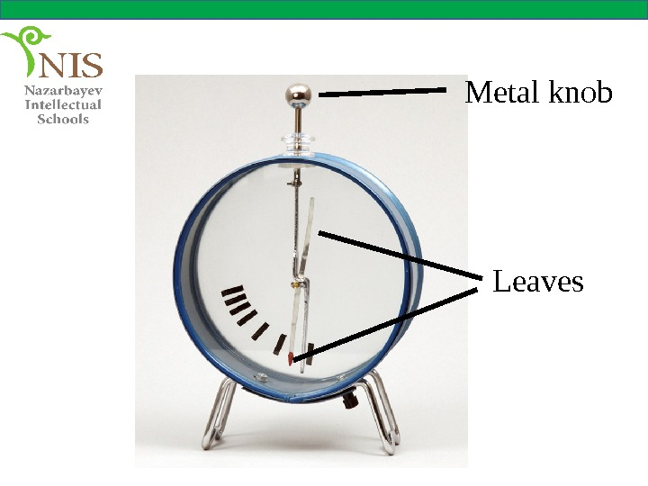 Metal knob Leaves