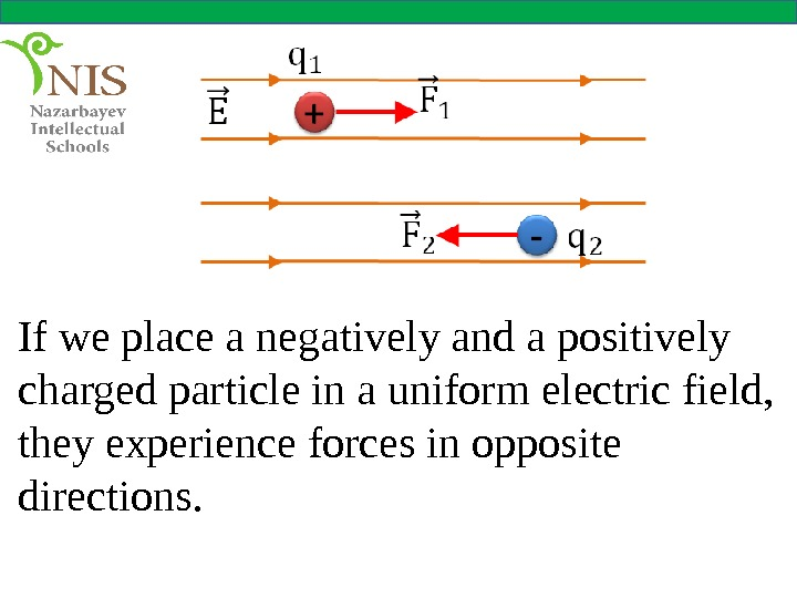 If we place a negatively and a positively charged particle in a uniform electric field,