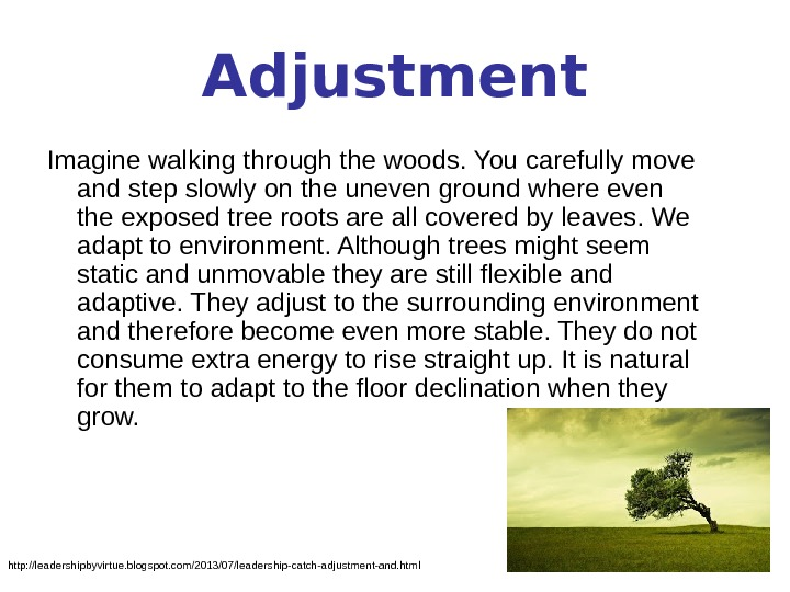 Adjustment Imagine walking through the woods. You carefully move and step slowly on the uneven ground