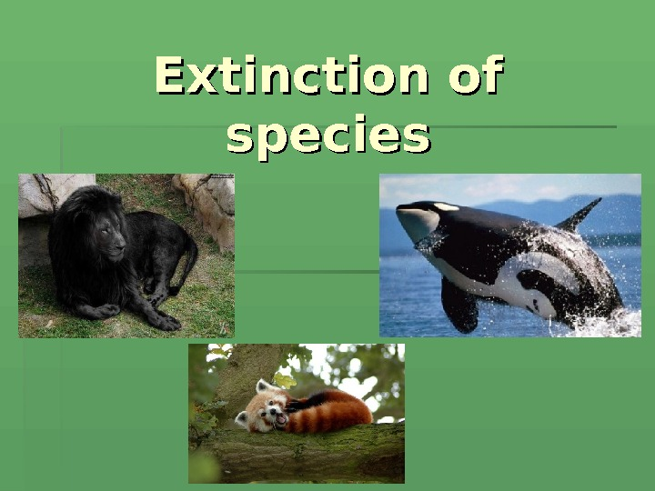 Extinction of species