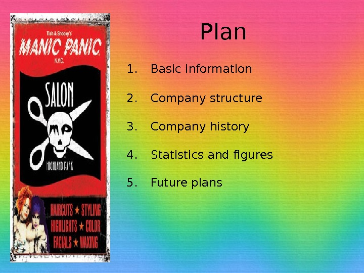 Plan 1. Basic information 2. Company structure 3. Company history 4. Statistics and figures