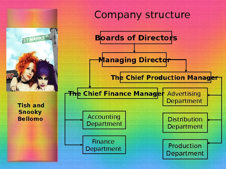 Company structure The Chief Finance Manager  Accounting  Department  Finance Department The
