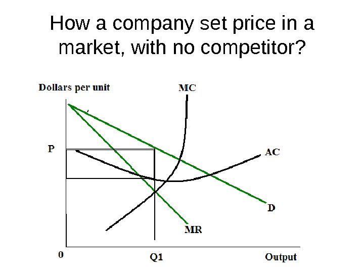 How a company set price in a market, with no competitor?