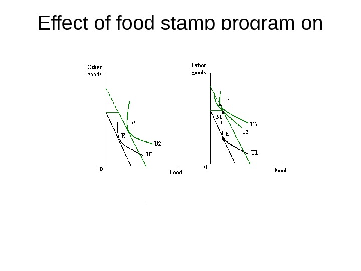 Effect of food stamp program on consumption