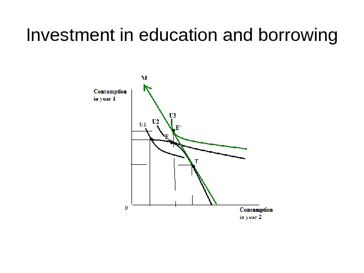 Investment in education and borrowing