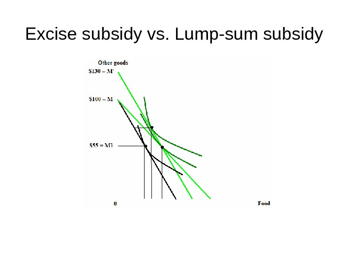 Excise subsidy vs. Lump-sum subsidy