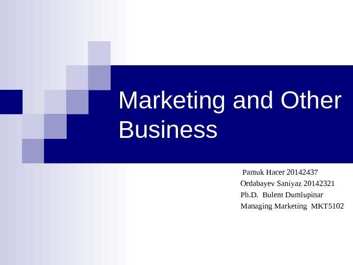 Marketing and Other Business       Pamuk Hacer 20142437