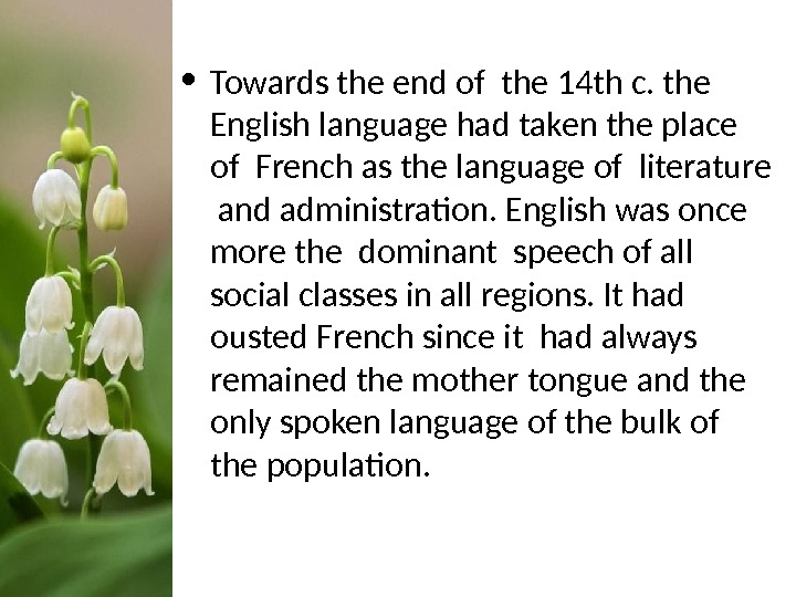 • Towards the end of the 14 th c. the English language had taken the