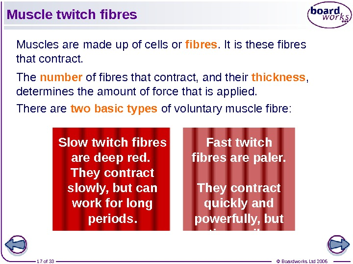 © Boardworks Ltd 200617 of 33 Muscle twitch fibres Muscles are made up of cells or