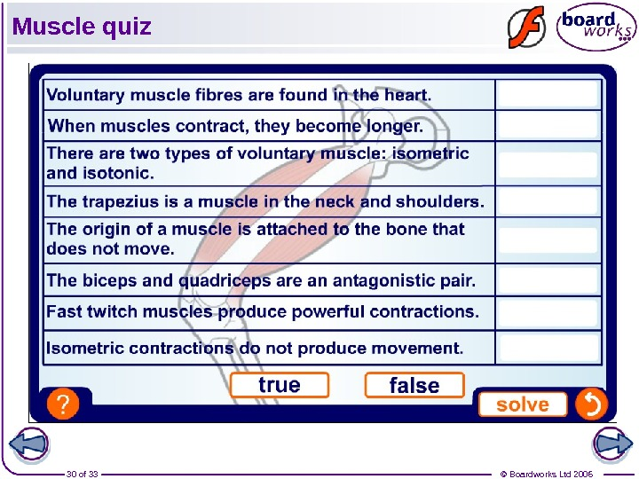 © Boardworks Ltd 200630 of 33 Muscle quiz