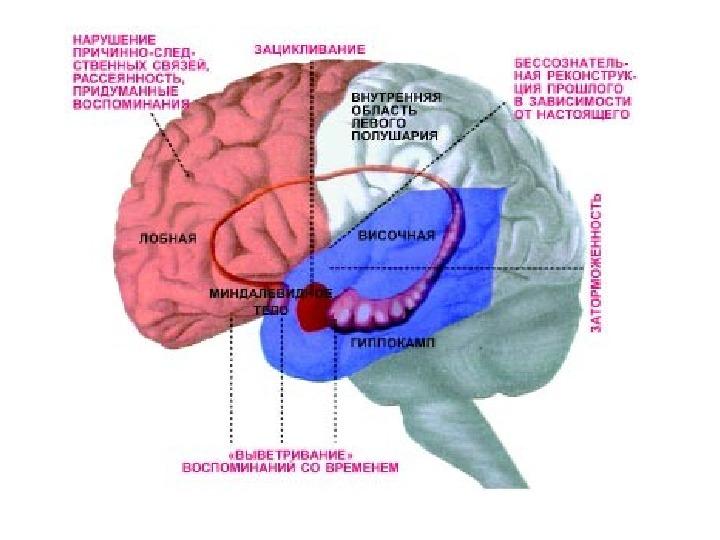 Телерецептор