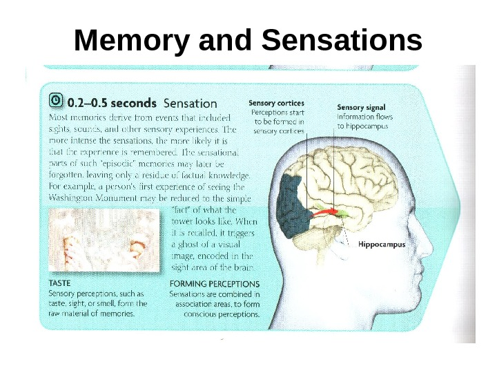 Memory and Sensations