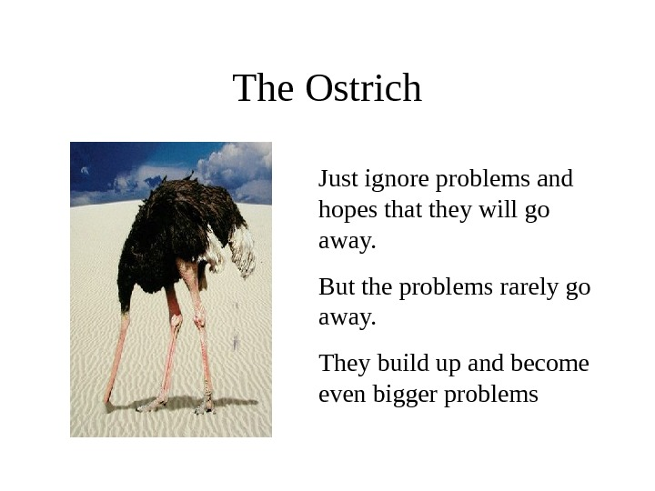 The Ostrich Just ignore problems and hopes that they will go away.  But the problems