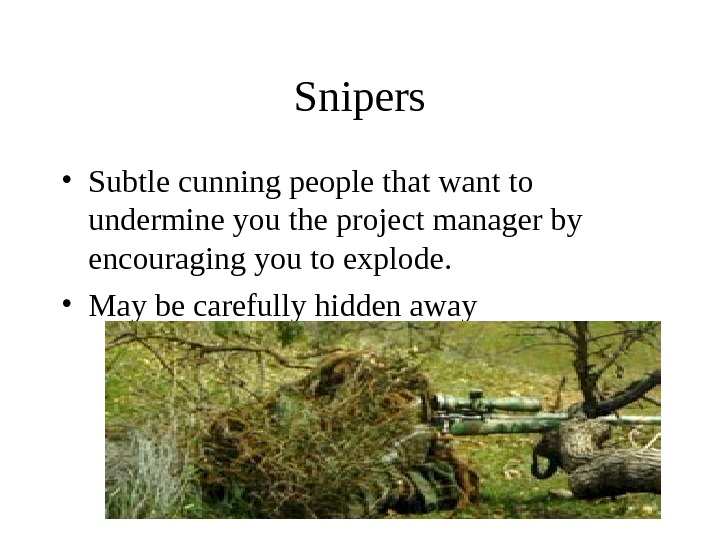 Snipers • Subtle cunning people that want to undermine you the project manager by encouraging you
