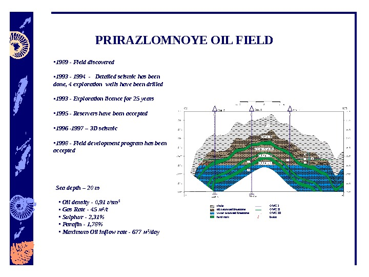 •  Oil density - 0, 91 г/ sm 3 •  Gas Rate -