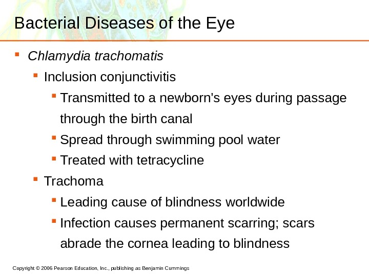 Copyright © 2006 Pearson Education, Inc. , publishing as Benjamin Cummings Bacterial Diseases of the Eye