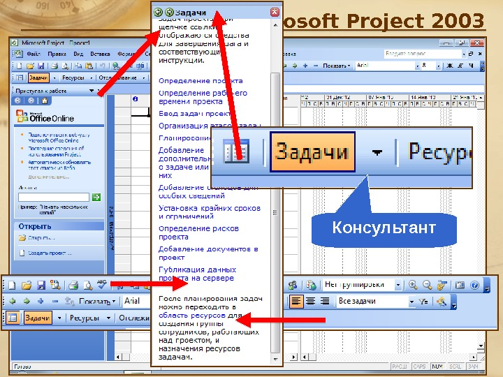 Microsoft Project 2003 Консультант