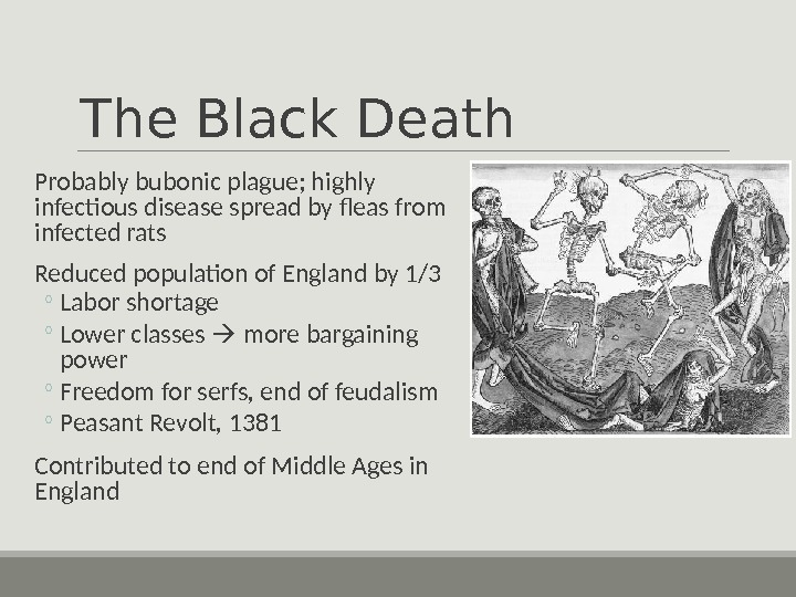 The Black Death  Probably bubonic plague; highly infectious disease spread by fleas from infected rats