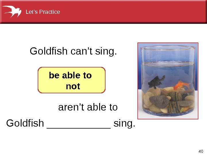 40 Goldfish ______ sing. Goldfish can't sing. be able to  not aren't able to. Let's