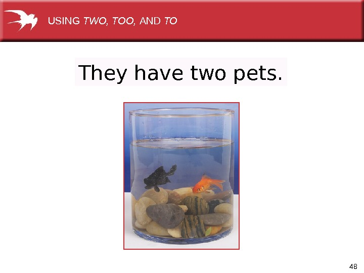48 They have two pets.  USING TWO, TOO,  AND TO
