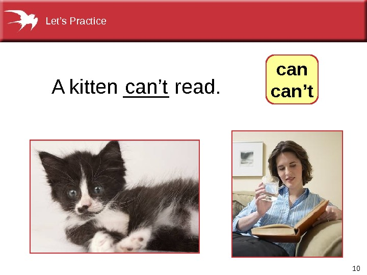 10 can't. A kitten ____ read.  can't. Let's Practice