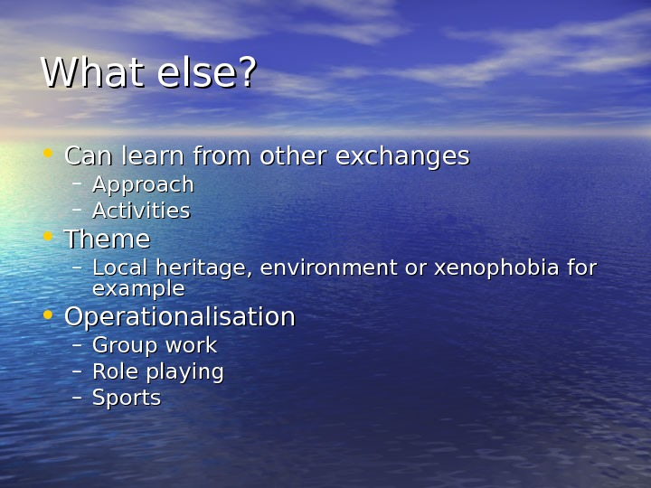 What else?  • Can learn from other exchanges – Approach – Activities •