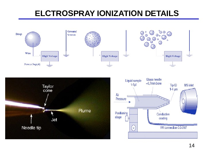 14 ELCTROSPRAY IONIZATION DETAILS