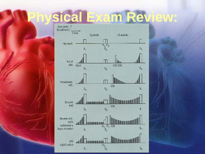 11/12/02 Lubna Piracha, D. O. 15 Physical Exam Review: