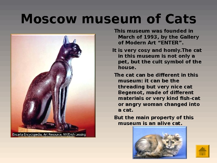 Moscow museum of Cats  This museum was founded in March of 1993, by the Gallery