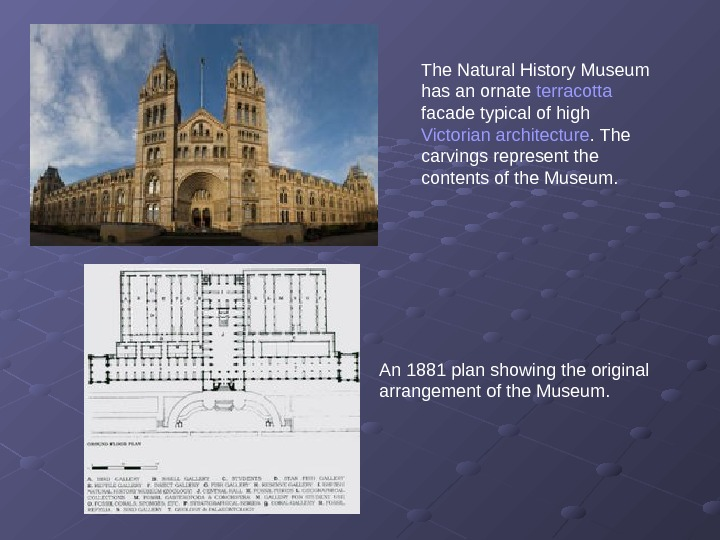 The Natural History Museum has an ornate terracotta  facade typical of high Victorian