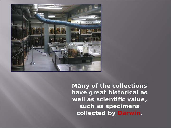 Many of the collections have great historical as well as scientific value,  such as specimens