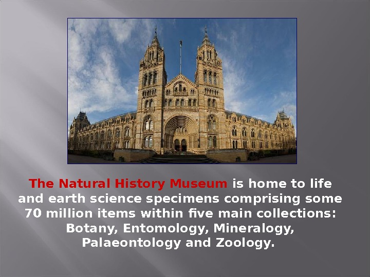The Natural History Museum is home to life and earth science specimens comprising some 70 million