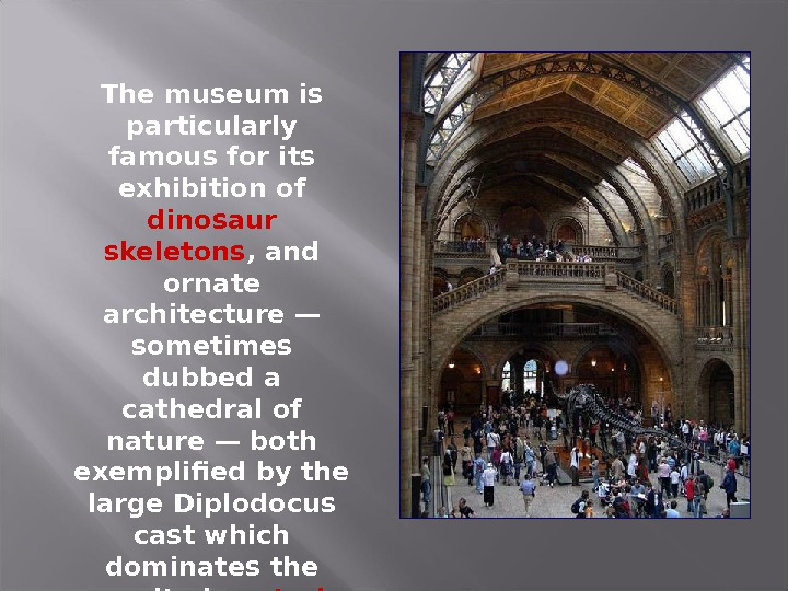 The museum is particularly famous for its exhibition of dinosaur skeletons , and ornate architecture —