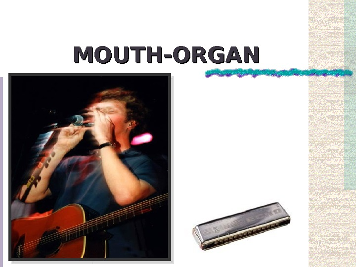 MOUTH-ORGAN