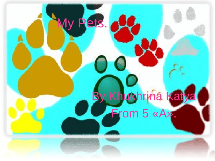 My Pets. By Khukhrina Katya From 5  «А» .