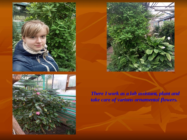 There I work as a lab assistant, plant and take care of varions ornamental flowers.